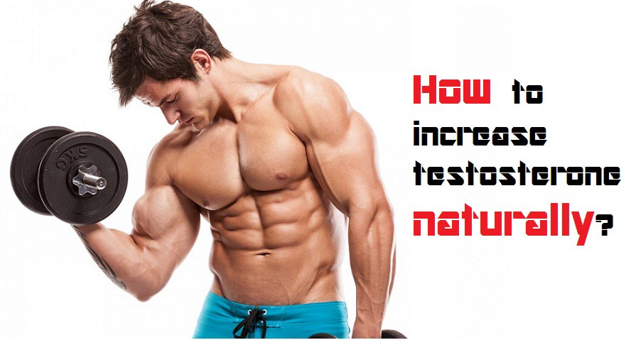How To Increase Testosterone in 2021